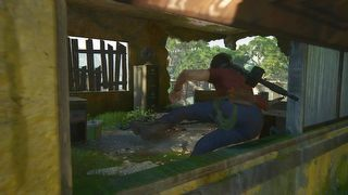 Uncharted: The Lost Legacy id = 353839
