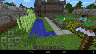 Minecraft: Pocket Edition id = 292616