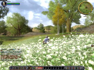 The Lord of the Rings Online: Shadows of Angmar id = 79714