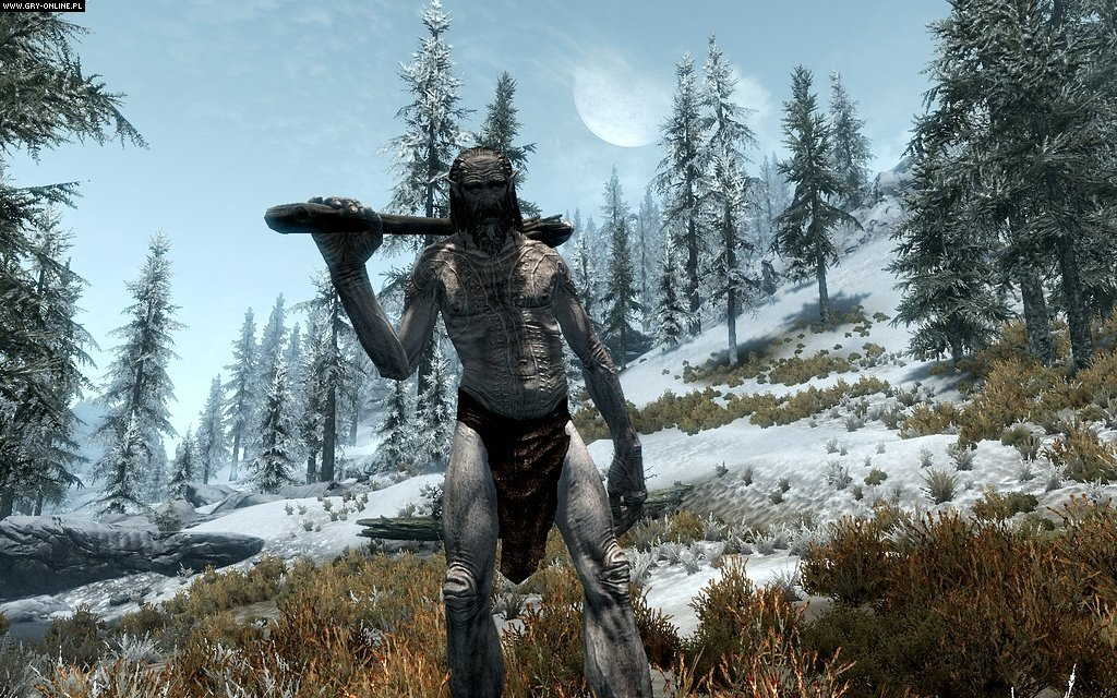 The Elder Scrolls V: Skyrim PC Games Image 1/194, Bethesda Softworks