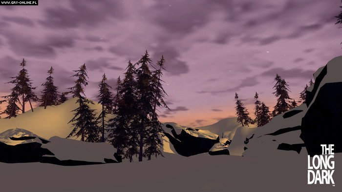The Long Dark PC Games Image 11/11, Hinterland Studio