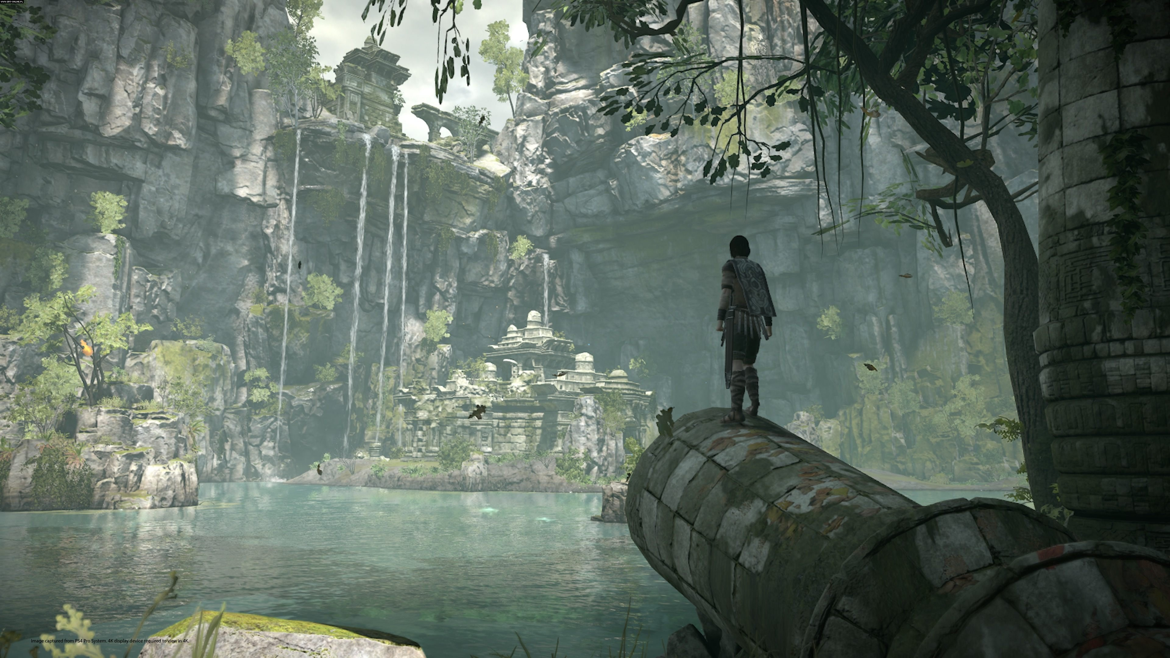 Shadow of the Colossus PS4 Games Image 17/32, Bluepoint Games, Sony Interactive Entertainment