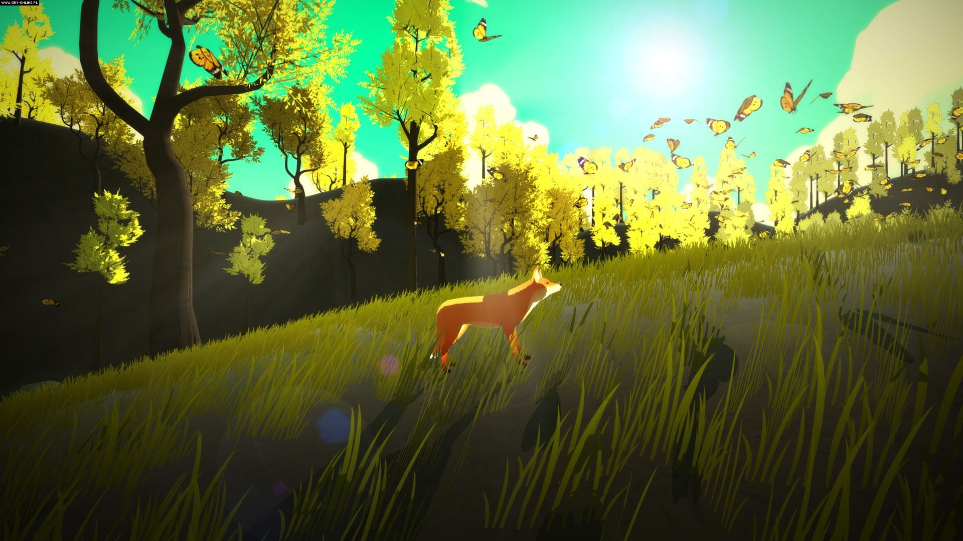 The First Tree PC Games Image 11/11, David Wehle