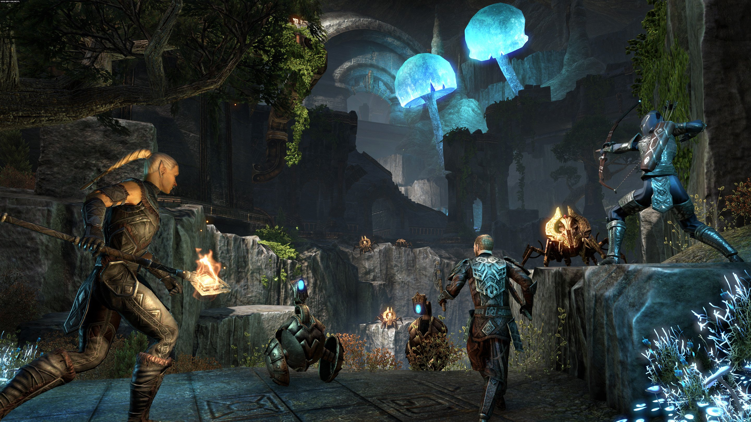 The Elder Scrolls Online: Tamriel Unlimited PC, PS4, XONE Games Image 20/104, ZeniMax Online Studios, Bethesda Softworks
