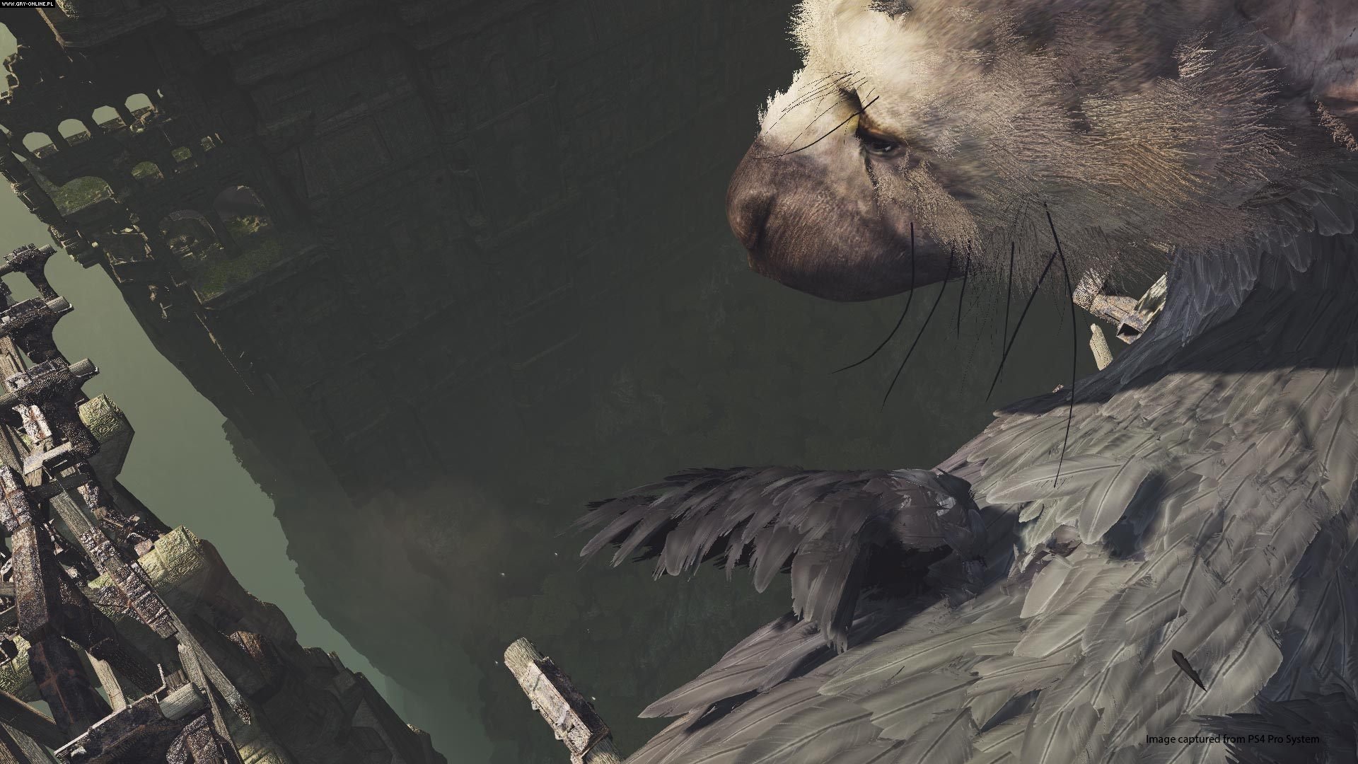 The Last Guardian VR Demo PS4 Games Image 10/10, Sony Interactive Entertainment