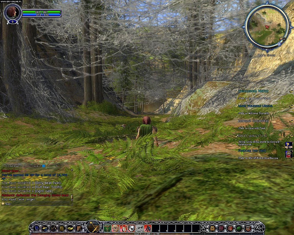 The Lord of the Rings Online PC Games Image 8/64, Turbine Entertainment, Codemasters Software