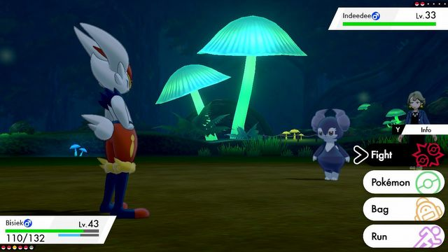Pokemon Sword Review – Its not very effective! - picture #2