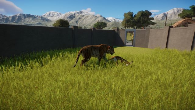 Planet Zoo Review – Is This Even a Game? - picture #5