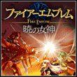 game Fire Emblem: Radiant Dawn