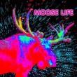 game Moose Life