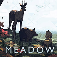 Meadow (PC)