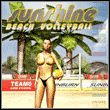 Game Sunshine Beach Volleyball (PC) Cover