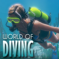 World of Diving [PC]