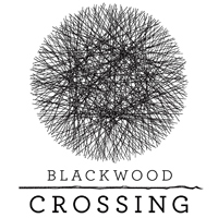 Game Blackwood Crossing (PC) Cover