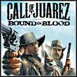 game Call of Juarez: Więzy Krwi