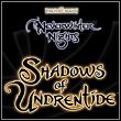 Neverwinter Nights: Shadows of Undrentide [PC]
