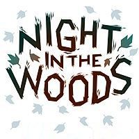 Night in the Woods Game Box