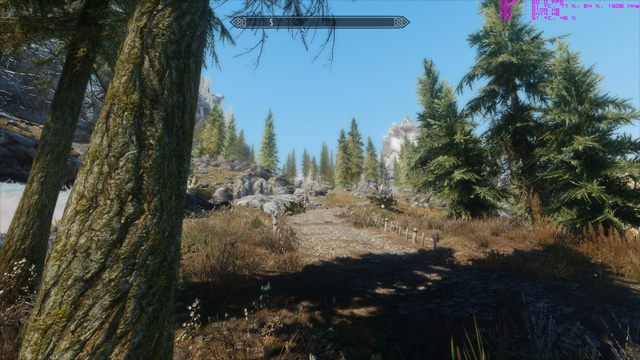 The Elder Scrolls V: Skyrim mod Enhanced Vanilla Trees v.1.2