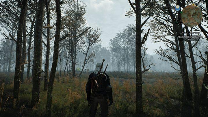 The Witcher 3: Wild Hunt GAME MOD Immersive Cam v 4 2
