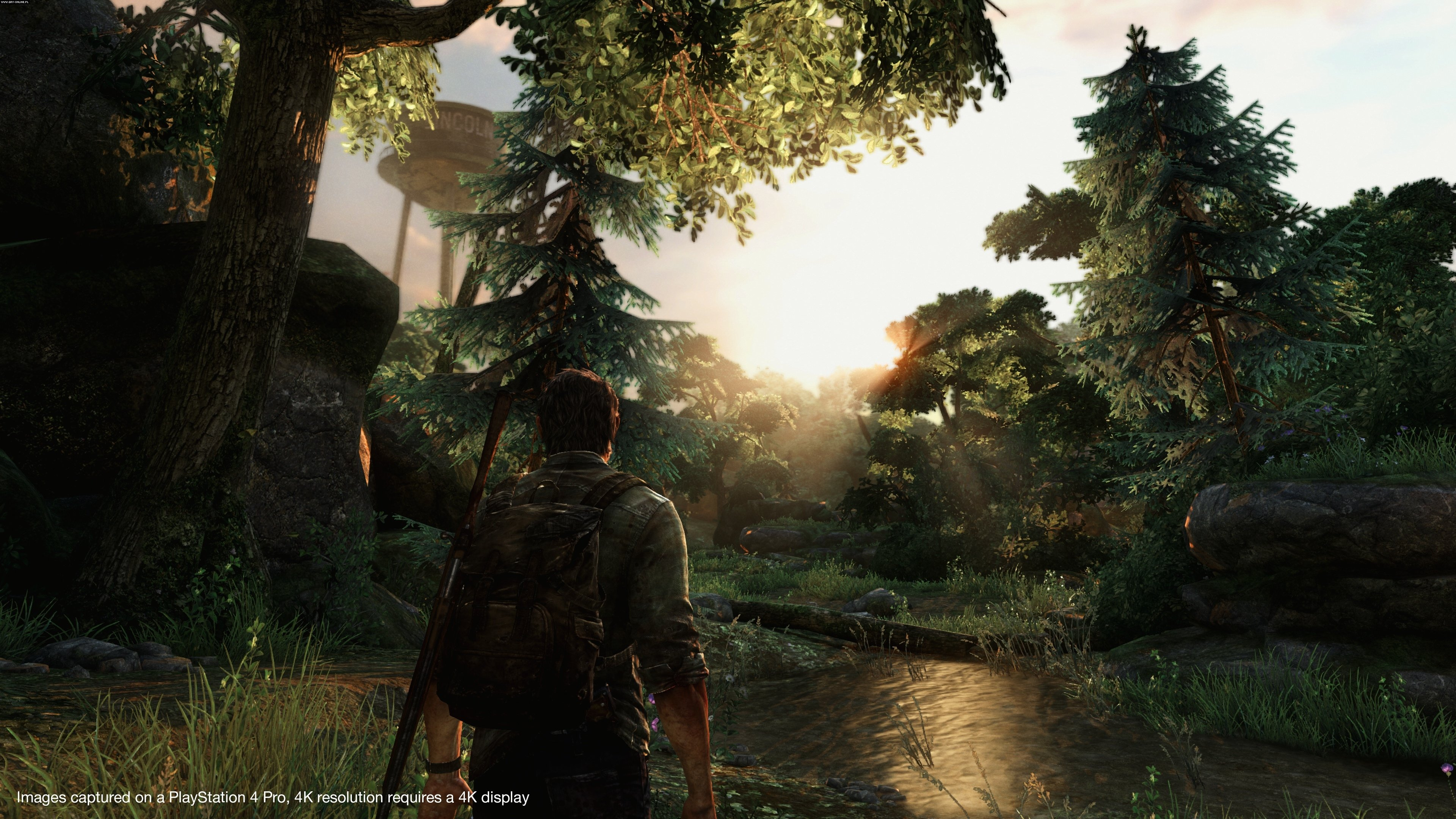 The Last of Us PS4 Gry Screen 1/201, Naughty Dog, Sony Interactive Entertainment