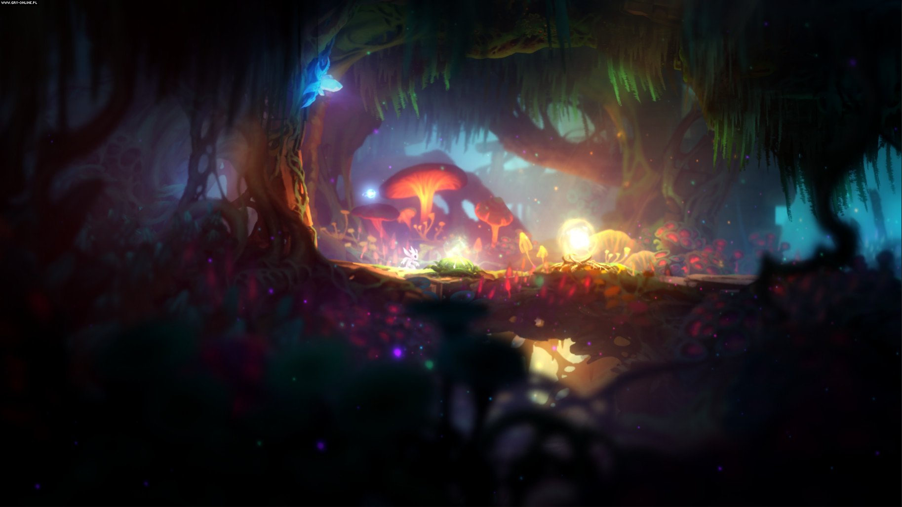 Ori and the Blind Forest: Definitive Edition PC, XONE Gry Screen 2/20, Moon Studios, Xbox Game Studios / Microsoft Studios