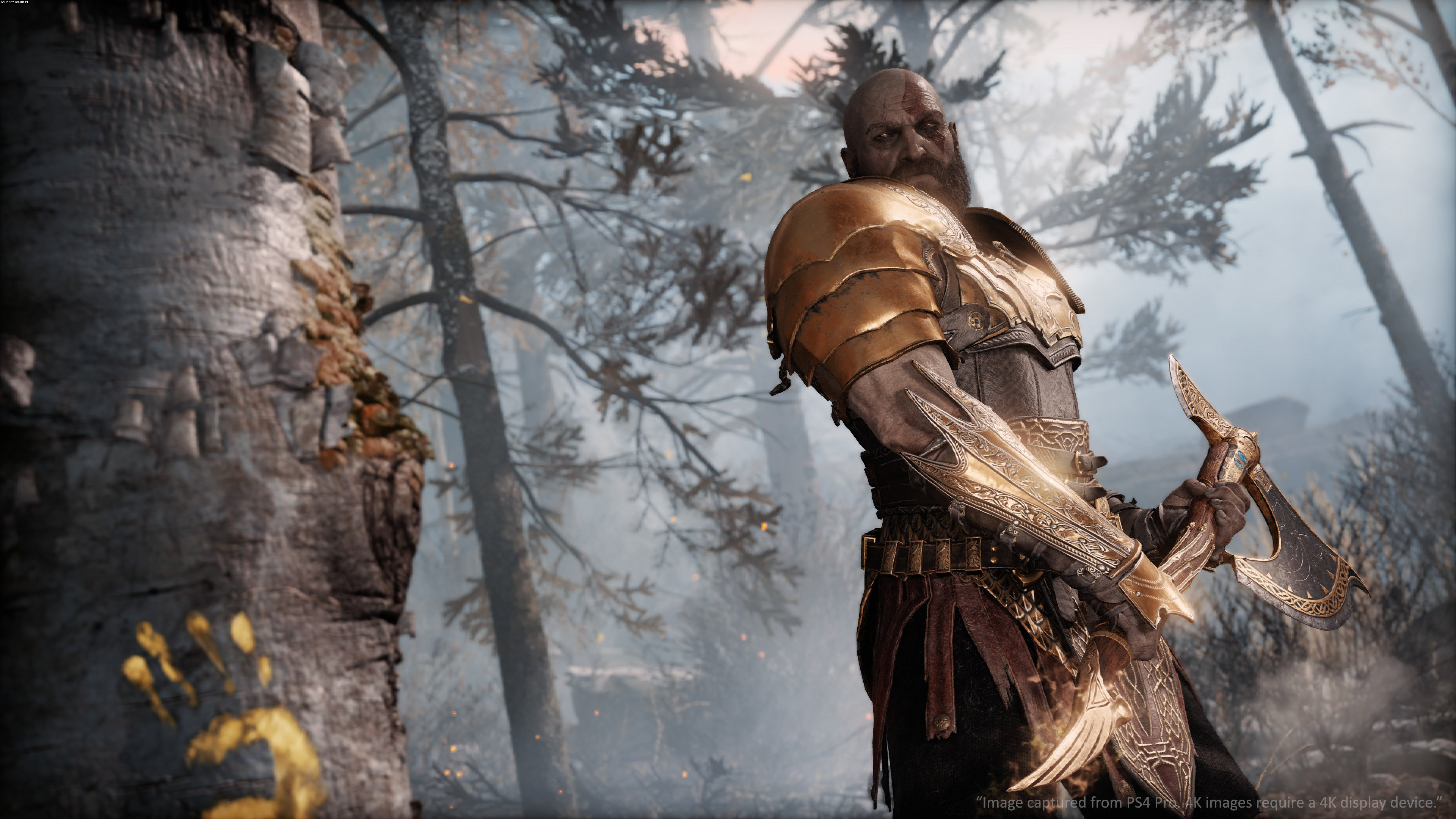 God of War PS4 Gry Screen 1/105, Sony Interactive Entertainment