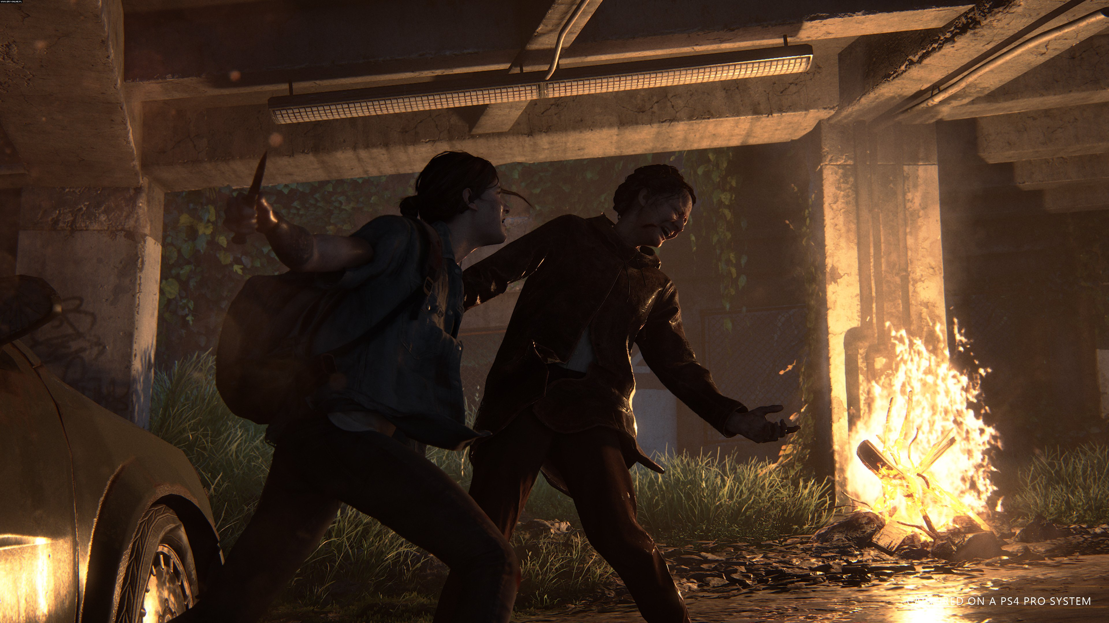 The Last of Us: Part II PS4 Gry Screen 11/38, Naughty Dog, Sony Interactive Entertainment