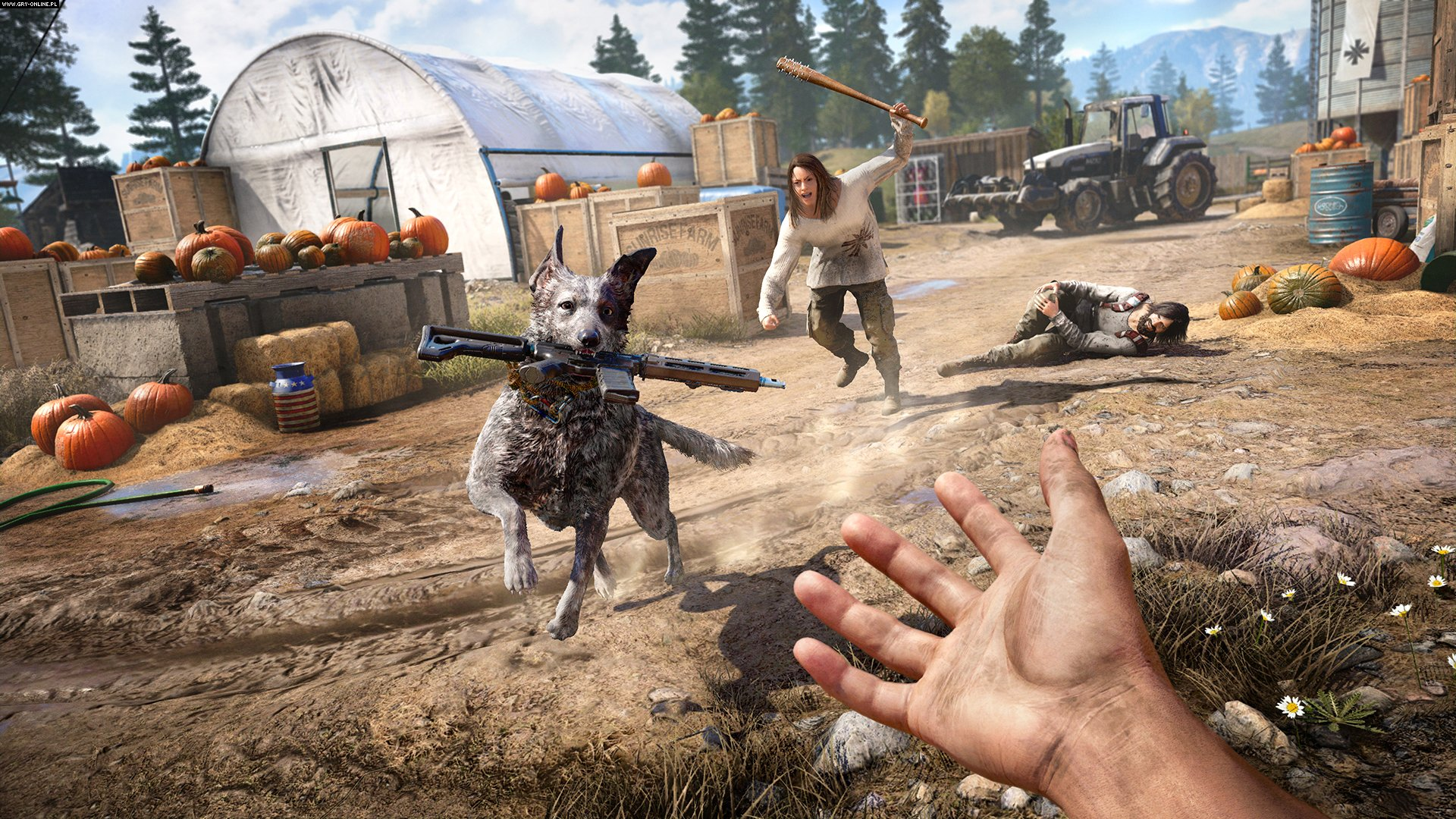 Far Cry 5 PC, PS4, XONE Gry Screen 28/38, Ubisoft