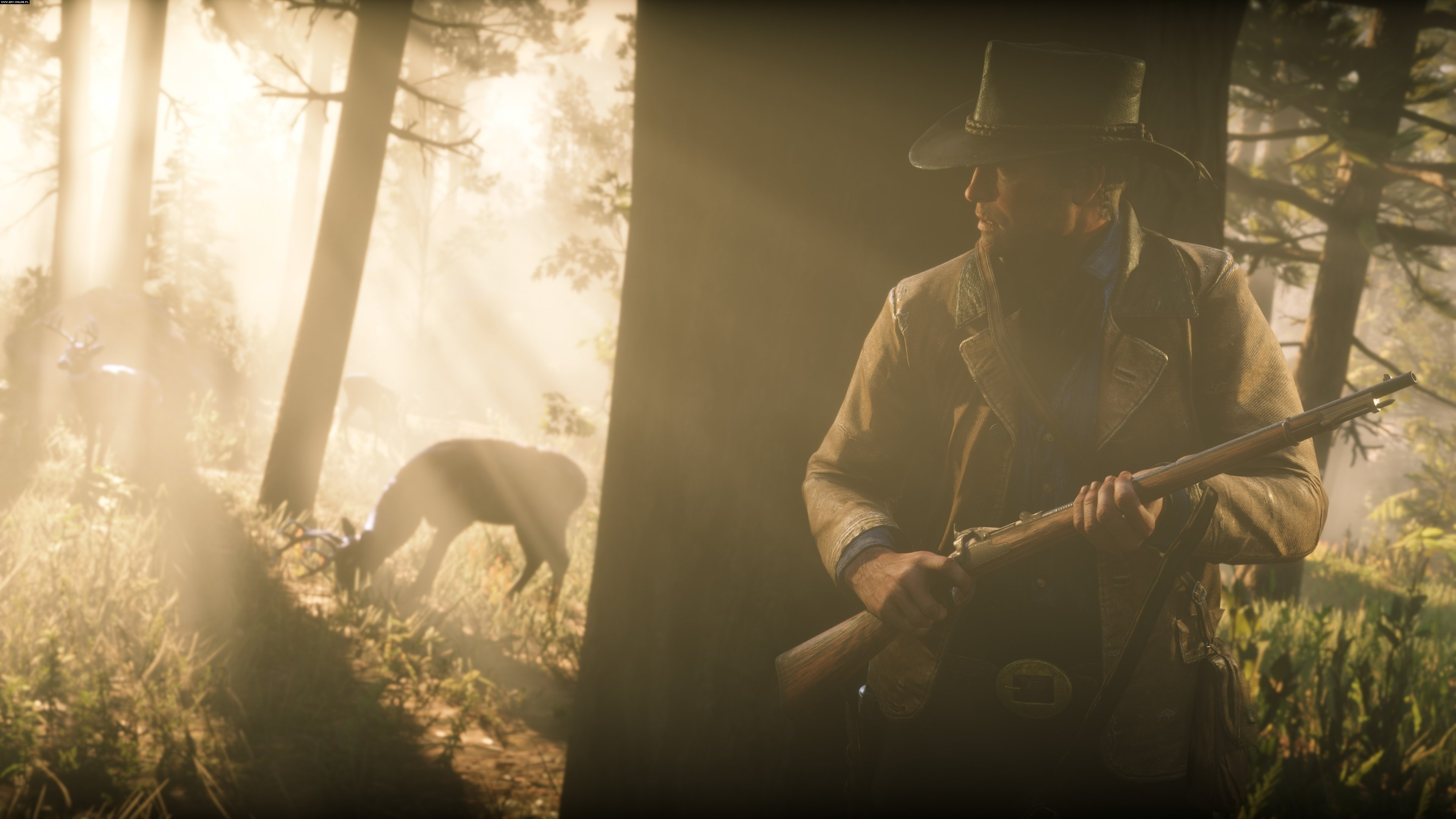 Red Dead Redemption 2 PC Gry Screen 9/150, Rockstar Games