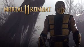 Mortal Kombat 11 - Bijatyki