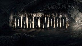 Darkwood (PC)