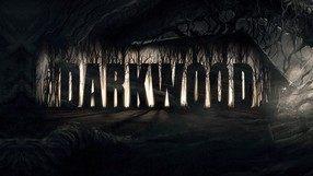 Darkwood (PC)