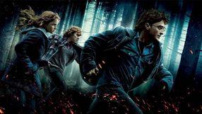 Tryskaj¹ca krew i lataj¹ce g³owy w zaskakuj¹co brutalnej przeróbce Harry'ego Pottera