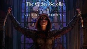 The Elder Scrolls Online: Dark Brotherhood (PS4)
