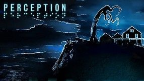 Perception (Switch)
