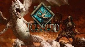 Icewind Dale: Enhanced Edition (iOS)
