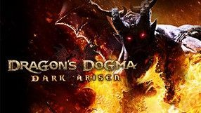 Dragon's Dogma: Dark Arisen (PC)