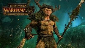Total War: Warhammer - Realm of The Wood Elves (PC)