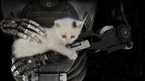 The Talos Principle (PS4)
