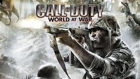 Call of Duty: World at War (NDS)