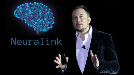 Elon Musk planuje podłączyć mózg do komputera