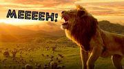 Recenzja filmu Król Lew – dlaczego się nie udało?