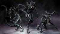 Obcy - pi�ta cz�� filmowego cyklu b�dzie kontynuacj� Aliens [news zaktualizowany]
