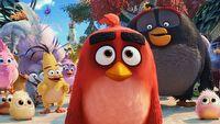 Netflix stworzy serial na licencji Angry Birds