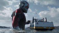 Pierwsze recenzje filmu Ant-Man i Osa � du�o �miechu i rado�ci