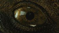 Miliardowy Jurassic World 2 i debiut nowego Ant-Mana w USA