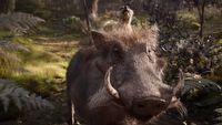 Timon i Pumba na nowym zwiastunie Króla Lwa
