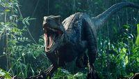 Kr�tki film z uniwersum Jurassic World - zobacz konfrontacj� z dinozaurami