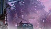 Nicolas Cage na trailerze ekranizacji opowiadania Lovecrafta - Color Out of Space