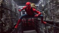 Sony potwierdziło nazwę filmowego uniwersum Spider-Mana